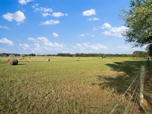 60 Acres And Very High Quality Home : Groveland : Lake County : Florida