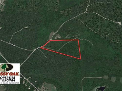 15 Acres of Hunting And Residentia : Farmville : Prince Edward County : Virginia
