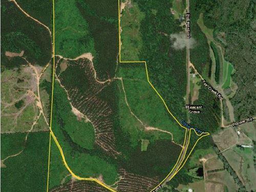 Benevola Road Robertson Tract : Gordo : Pickens County : Alabama