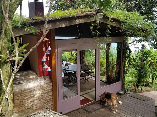 Titled Eco Mainland Farm Sea & Road : Almirante : Panama