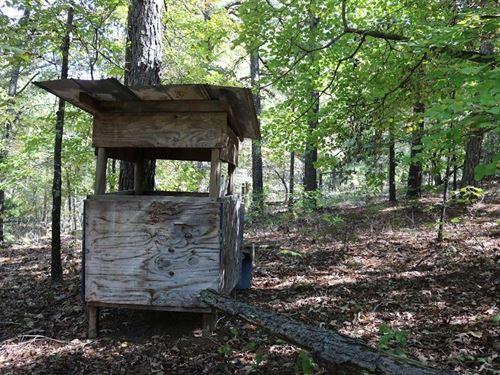 Recreational Land Violet Hill : Violet Hill : Izard County : Arkansas