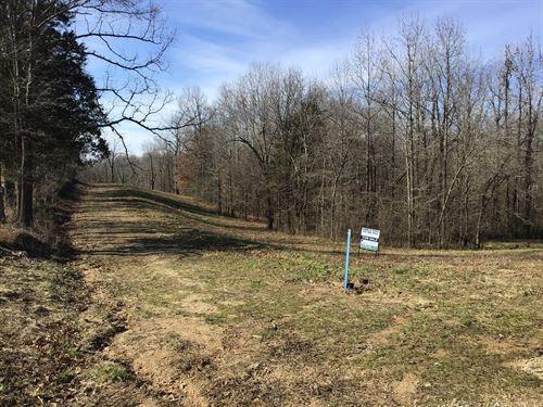 Tract 14 5.14 Acres : Poplar Bluff : Butler County : Missouri