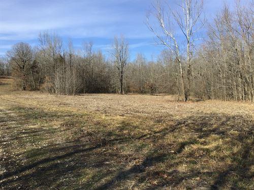 Tract 13 6 Acres Close to Poplar : Poplar Bluff : Butler County : Missouri