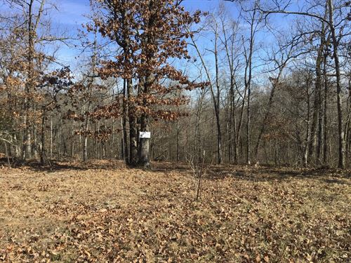 Tract 12 6 Acres Just Minutes From : Poplar Bluff : Butler County : Missouri