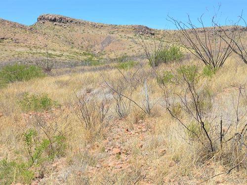 37 Acres Of Amazing Natural Beauty : Douglas : Cochise County : Arizona