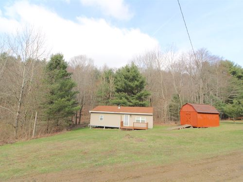 Parks Rd, 5 Acres : New Concord : Muskingum County : Ohio