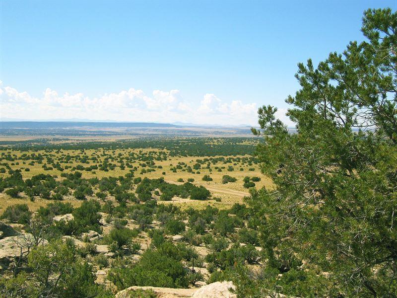 Arizona's Woodland Valley Ranch : Saint Johns : Apache County : Arizona