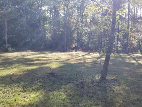 85+/- Acres Hunting Property : Dunlap : Bledsoe County : Tennessee