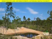 Large Pond, Large Level Building St : Elk Creek : Texas County : Missouri