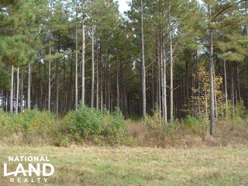 120 Acres Crp & Hunting Property : Hazen : Prairie County : Arkansas