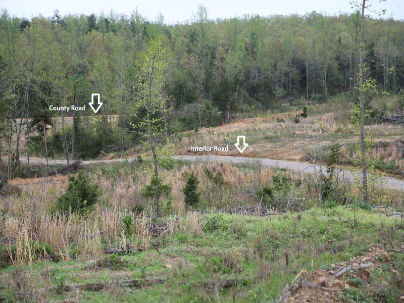 36.72 Acre Tracts : Cave City : Sharp County : Arkansas
