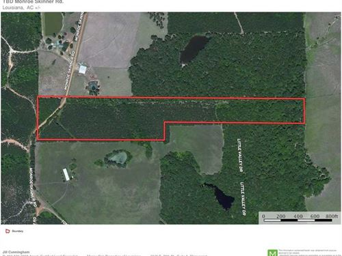 Monroe Skinner Road Tract, Sabine : Florien : Sabine Parish : Louisiana