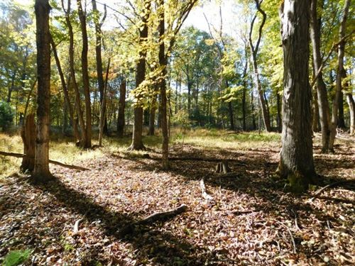 Land For Sale in Springfield, WV : Springfield : Hampshire County : West Virginia