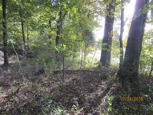 Land To Call Your Own, 10 Acres : Metropolis : Massac County : Illinois