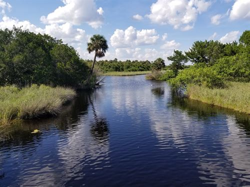 225 Ac On Us Hwy 1 Volusia County : Oak Hill : Volusia County : Florida