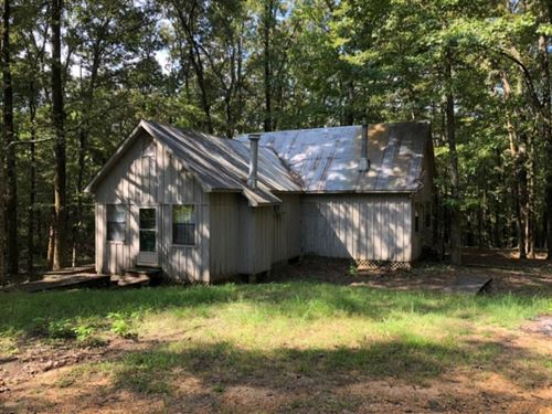 10 Acres With A Cabin In The Woods : McCarley : Carroll County : Mississippi