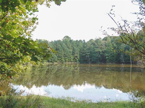 Springville, Tennessee Henry County : Springville : Henry County : Tennessee