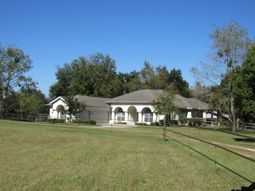 Dazzling Equestrian Homestead Kraus : Dade City : Pasco County : Florida