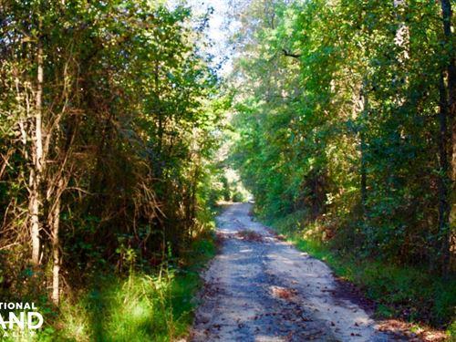 Mills Farm : Roanoke Rapid : Northampton County : North Carolina