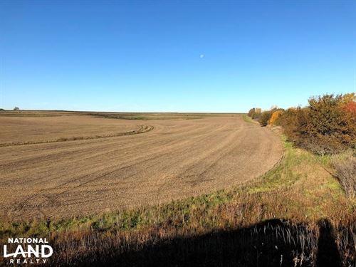 Red Oak Evergreen Avenue Farmland : Red Oak : Montgomery County : Iowa