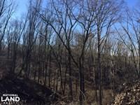 Altoona Hunting & Timber Tract : Altoona : Etowah County : Alabama
