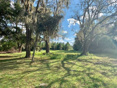 Land, Pasture, Home Site, 54+ Acres : Newberry : Gilchrist County : Florida