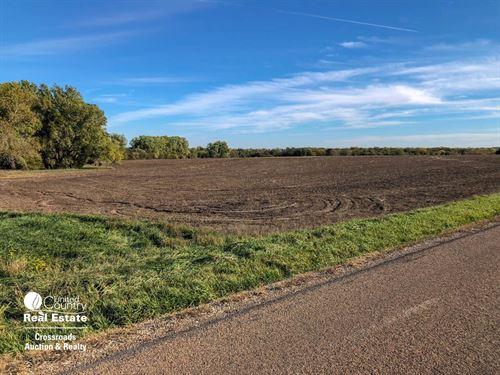 155 Acres Farmland, Pasture : Hope : Dickinson County : Kansas