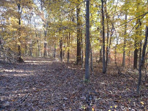 Vacant Land Missouri 5.5 Acres : Stover : Morgan County : Missouri