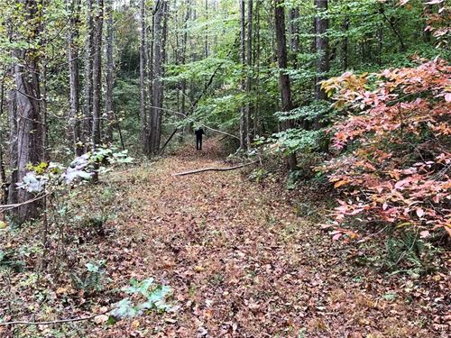 27.95 Acres, North Georgia Mtns : Waleska : Cherokee County : Georgia