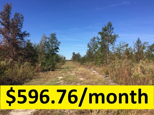Owner Financed Recreational Tract : Dublin : Laurens County : Georgia
