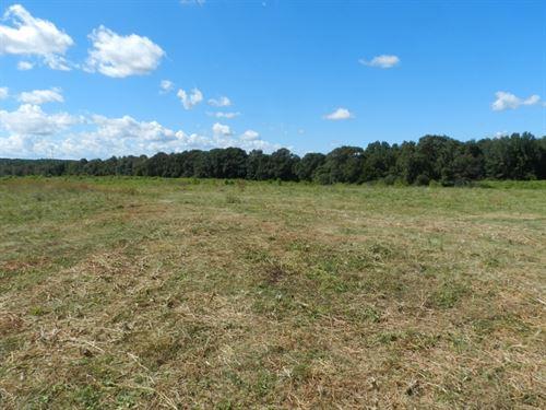 132 Ac Farm-Development Potential : McDonough : Henry County : Georgia