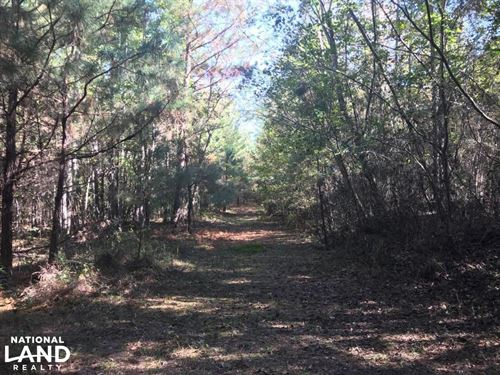 Sand Springs Road Fayette Homesite : Fayette : Alabama