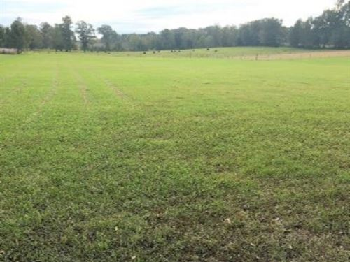 12 Acres In Hinds County In Terry : Terry : Hinds County : Mississippi