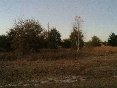 5 Acre Tract In Live Oak, Florida : Live Oak : Suwannee County : Florida