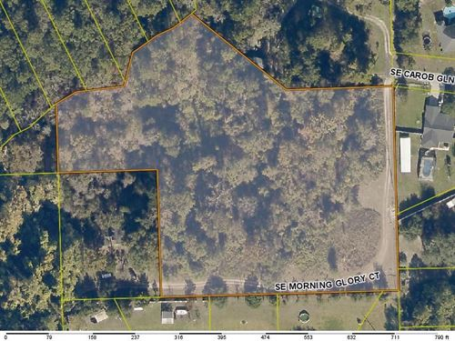 5 Acres In Lake City, Florida : Lake City : Columbia County : Florida