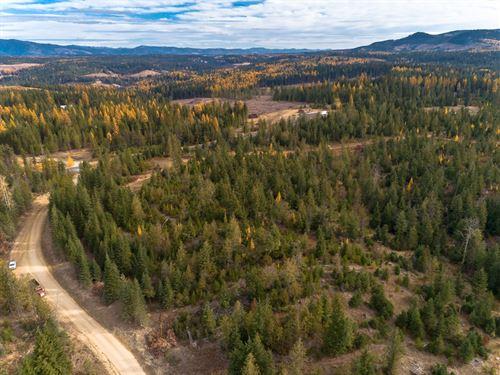 Idaho Rural Residential Acreage : Saint Maries : Benewah County : Idaho