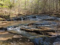 Creek Front, Asheville Nc, 10 Ac : Asheville : Buncombe County : North Carolina