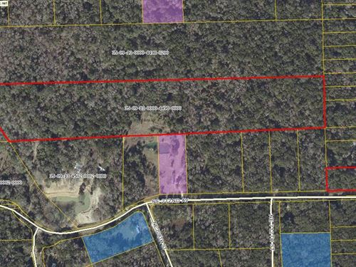 21.84 Acres 777303 : Old Town : Dixie County : Florida