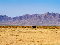 Homesite Bordering Blm Land : Deming : Luna County : New Mexico
