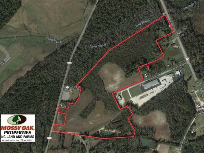 55 85 Acres of Farm, Hunting, And : Farm for Sale : Whiteville : Columbus  County : North Carolina
