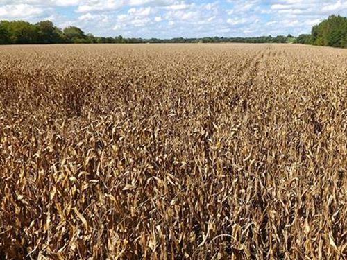 1045.75 Acres in Decatur Coun : Davis : Decatur County : Iowa