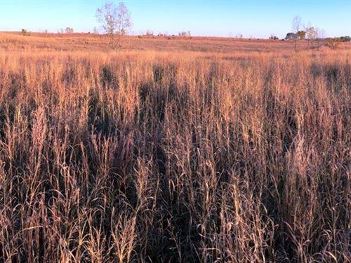 Quality Recreation Tract Mahaska : Oskaloosa : Mahaska County : Iowa
