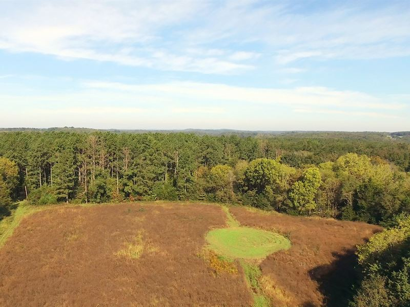 Phb Plantation : Farmville : Prince Edward County : Virginia