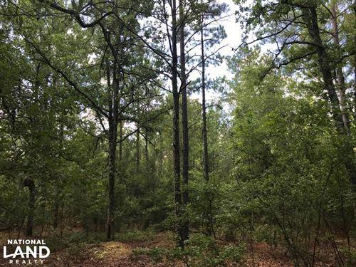 Holley Pond Rural Homesite : Batesburg : Aiken County : South Carolina