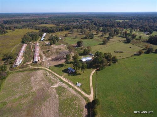 135 Ac, Cattle Ranch, Pasture With : El Dorado : Union County : Arkansas