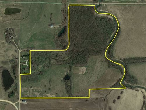 100 Acre Hunting Property For Sale : Lovilia : Monroe County : Iowa