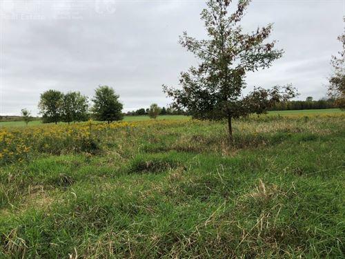 Secluded Buildable Acreage Ozaukee : Belgium : Ozaukee County : Wisconsin