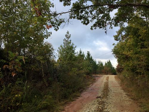 Tract 1600, Sealed Bid Land Sale : Mount Gilead : Henderson County : Tennessee