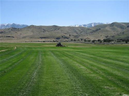 Land Nestled Against Mountains : Goshen : Utah County : Utah