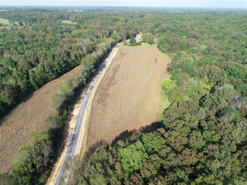 41-003 Greenhill Property : Lexington : Lauderdale County : Alabama